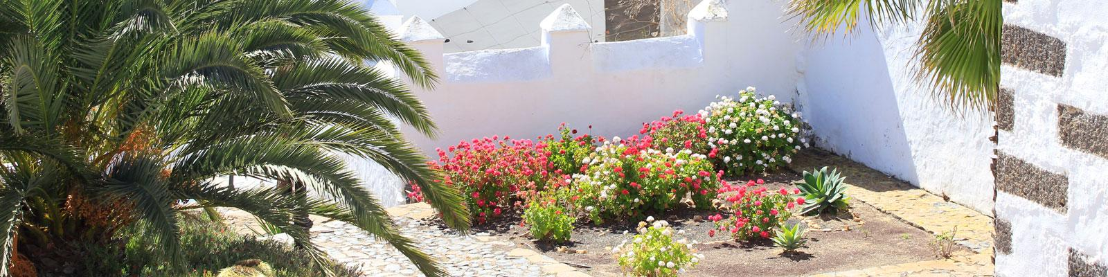 Fuerteventura Island - Tour Excursion